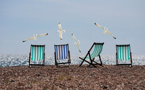 summer-814679_1280 Vacation for life: photo of beach chairs and seagulls