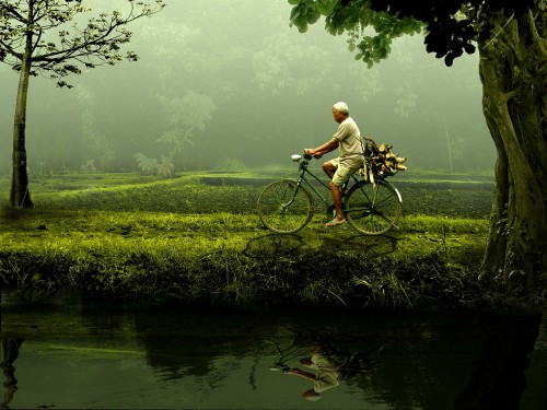 man-471192_1280 Simplism, Politics of simple: Photo of green and cyclist.