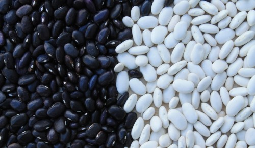 beans-799943_1920 4 reasons to stop thinking in black and white: Photo of beans, half black, half white.