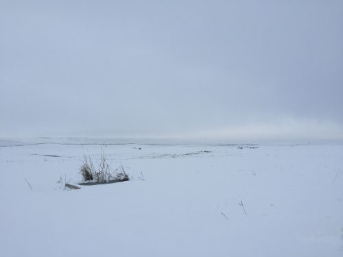Minimalism as landscape: Photo of open field covered in snow by Dan Erickson
