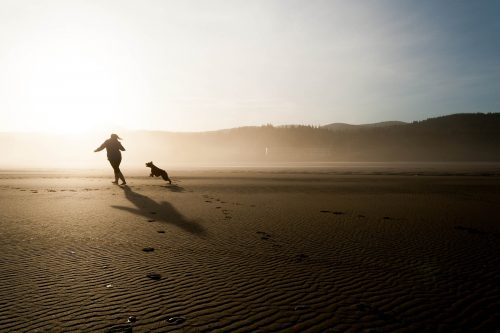Money matters keep us from living simply: Photo of dog and person playing on beach.